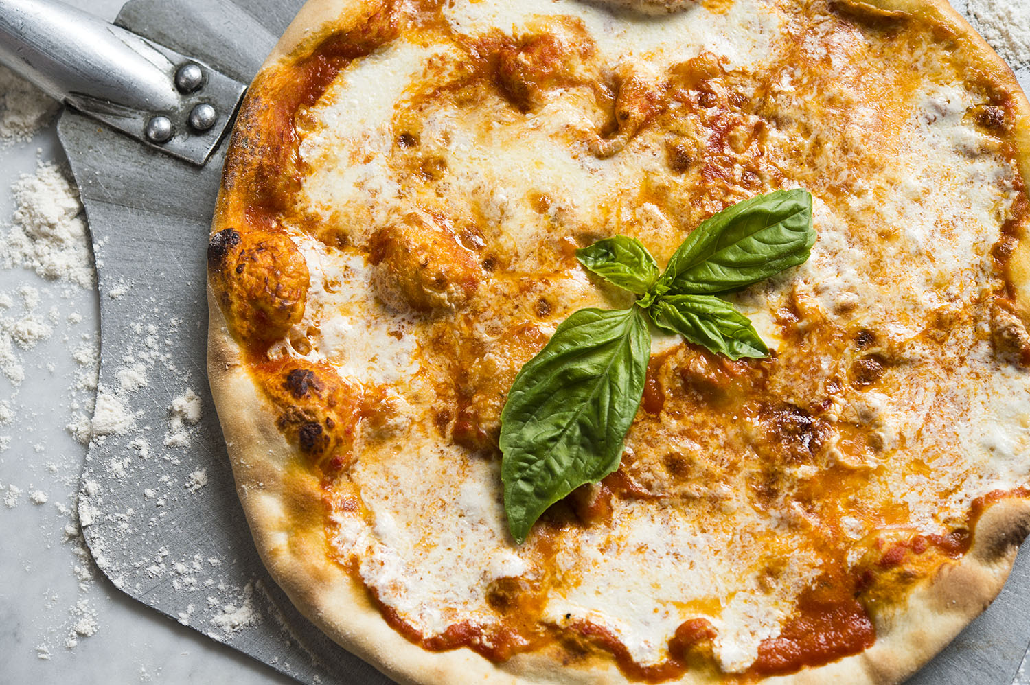 Mangia: Not Your Average Pizza Delivery